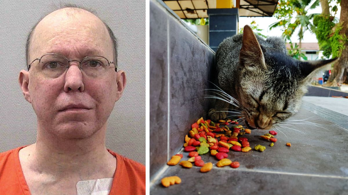 Police: Man fatally shot 72-year-old woman in face during argument over feeding feral cats