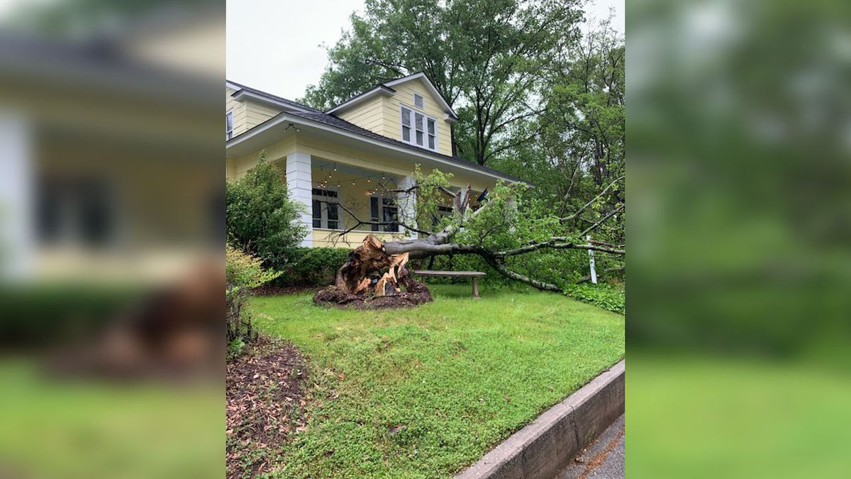 Four South Carolina tornadoes confirmed from Friday's severe weather