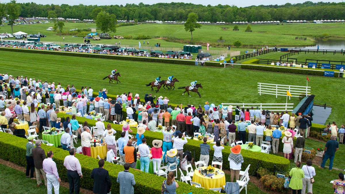 Saddle up for Queen's Cup Steeplechase