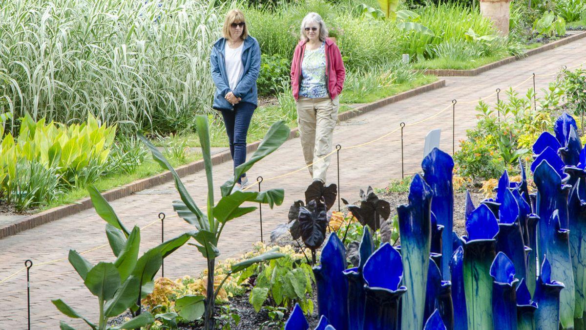 See larger-than-life glass sculpture exhibit at Daniel Stowe Botanical Garden