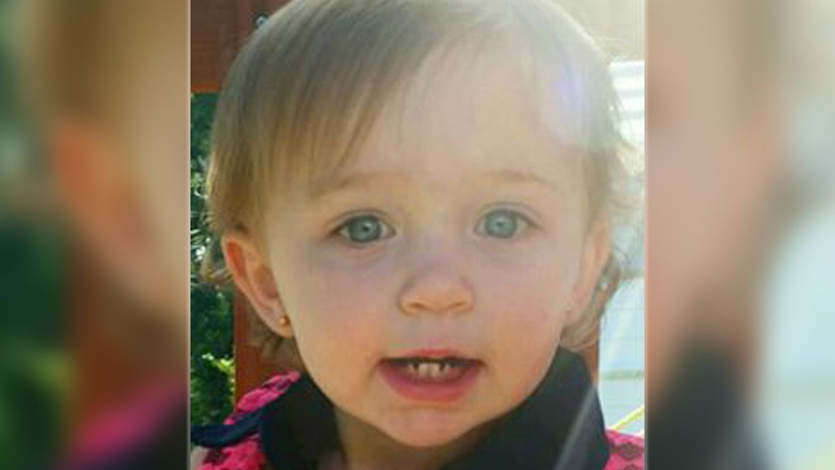 Sheriff: North Carolina toddler dies after being attacked by family dog