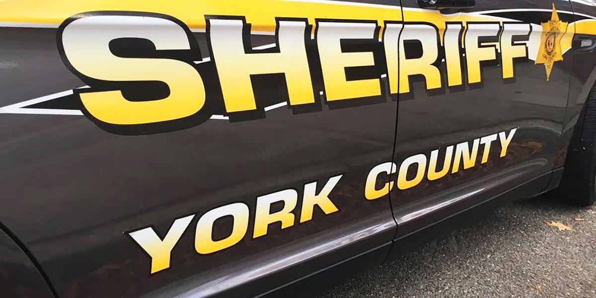 Deputies: ATV rider killed in crash during July 4th traffic stop