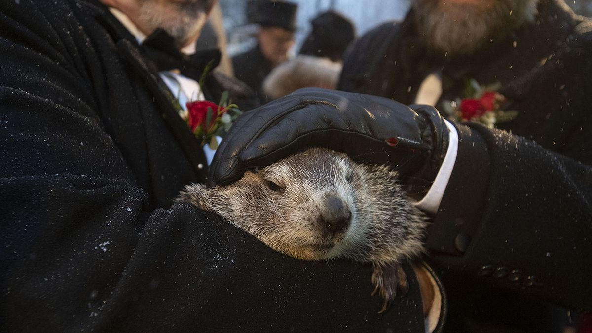 Groundhog Day 2020: Did Punxsutawney Phil see his shadow?