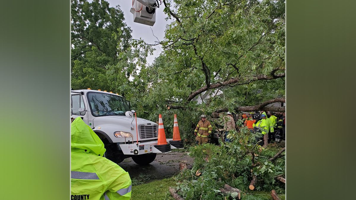 Man dies after tree, power pole falls on truck in Lancaster County