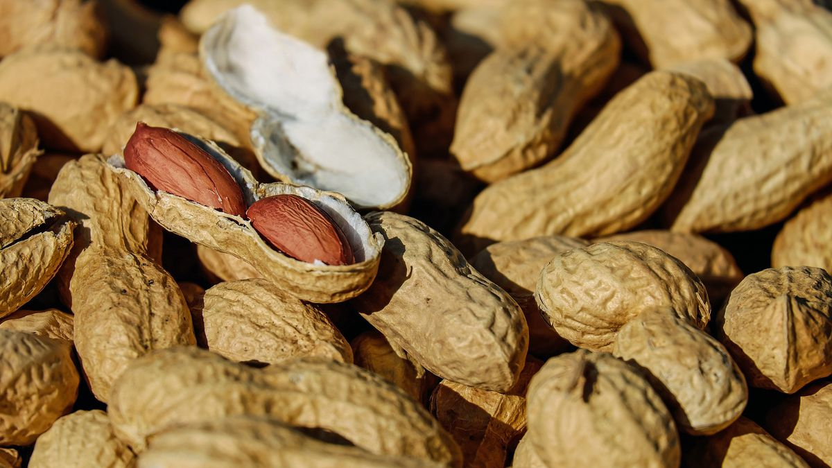 This peanut allergy treatment could worsen your symptoms, study says
