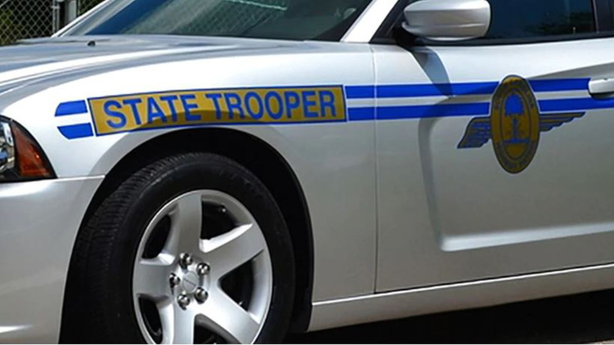 Troopers: Person fatally struck while crossing road in Chesterfield County