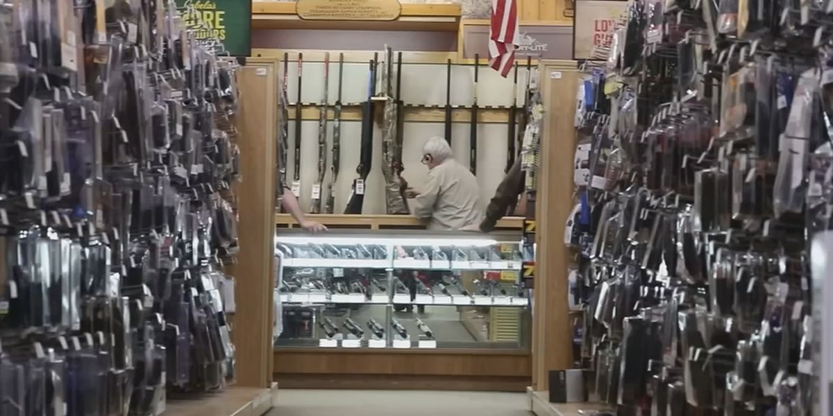Lincoln County passes resolution to be 2nd Amendment sanctuary