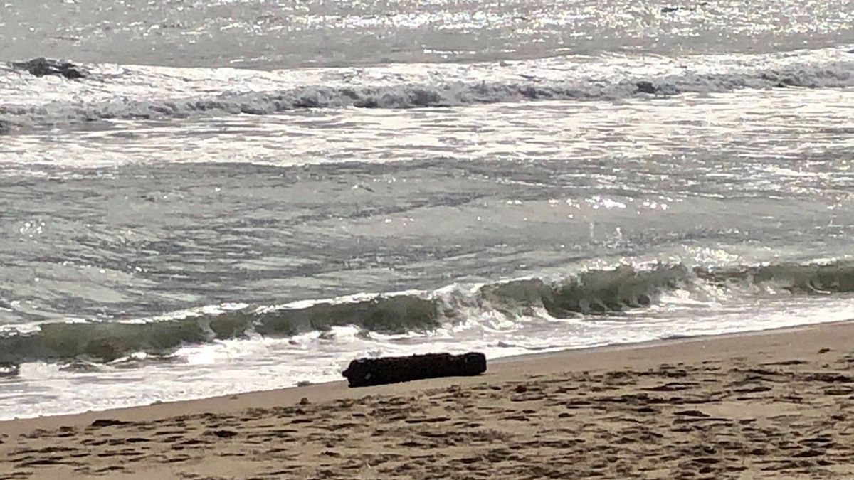 Navy to detonate WWII-era bomb along North Carolina coast