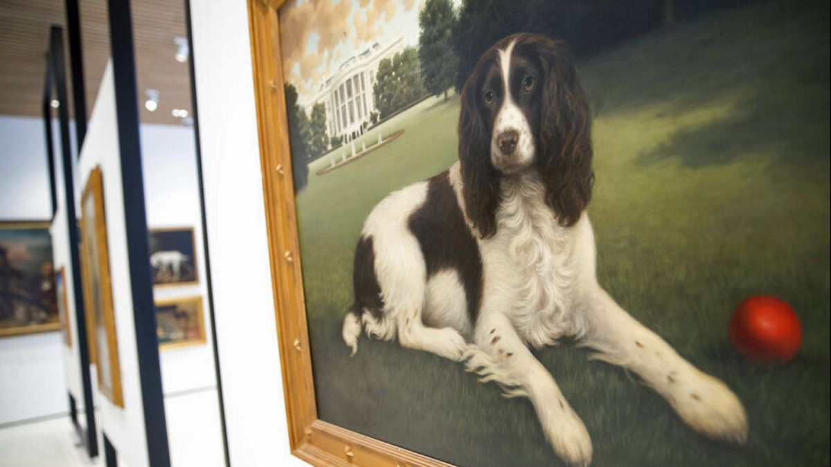 New York art museum goes to the dogs