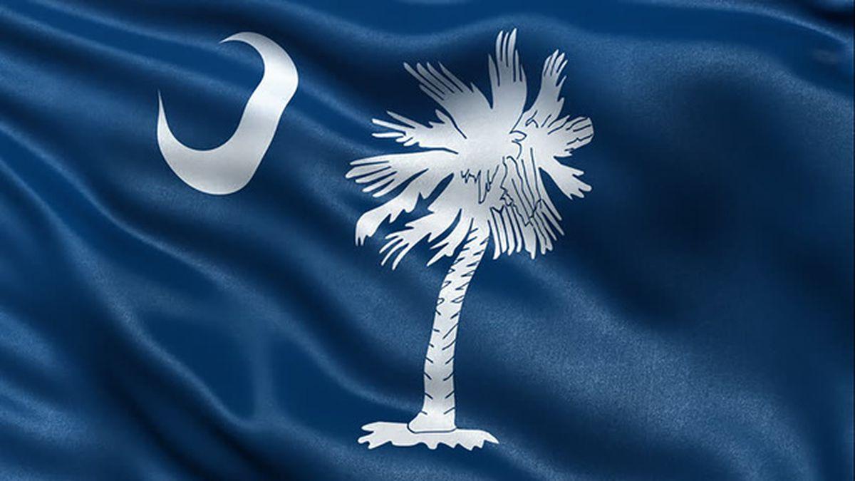 South Carolina county eyes dropping MLK, confederate holidays