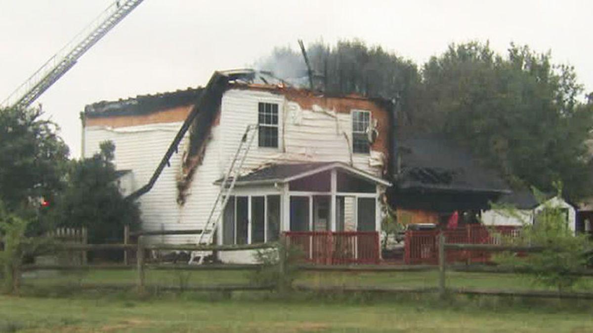 Dog dies in early morning house fire in Steele Creek neighborhood